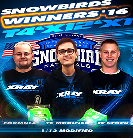 ' ' from the web at 'https://teamxray.com/images/content/promotions/00/2016_snowbirds_champions.png'